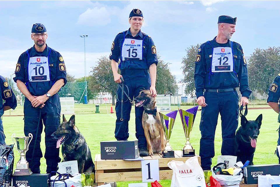 Svenska mästerskapen för polishundar gick i år av stapeln i Vadstena. 20 ekipage från olika delar av Sverige fick visa upp sina färdigheter i ett antal delmoment.